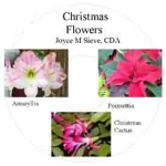 CD - Christmas Flowers