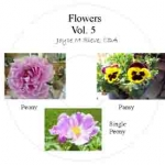 CD - Flowers Vol 5